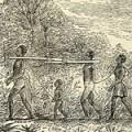 3.03 - slave transport